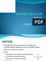 29768009 Divisao Celular Mitose Meiose Gametogenese