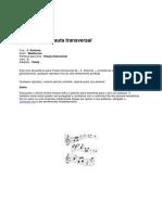 5 Sinfonia Flauta Transversal v0
