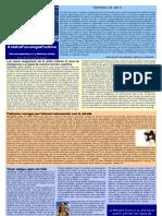 Boletín Psicología Positiva. Año 4 Nº 48