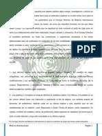 Manual de Estilo de Bitacora Internacional