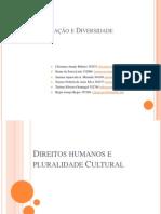 Direitos Humanos e Pluralidade Cultural[1]