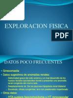Exploracion Urologia
