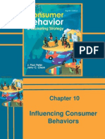 40473280 Consumer Behaviour and Marketing Strategy Peter Olson Chapter 010 2