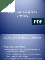 Radiologia Del Tracto Urinario