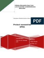 proiect semestrial