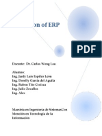 Resumen ERP