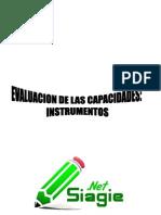 Evaluacion de Las Capacidades Instrumentos