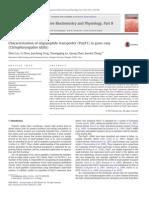 LiuZ13_Characterization of Oligopeptide Transporter