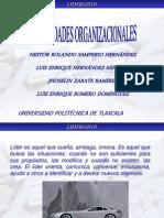 LIDERAZGO Habilidades organizacionales