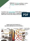 Aula Sobre Industria Petroquimica Definitiva