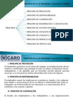 Principios de la Seguridad y Salud en el Trabajo. Ley N° 29783