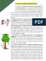 FUNCIONES de La Consej.matrim.