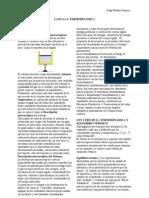 Física 2 Versión 2011 Mejorada, Capítulo 5 Termodinámica.doc