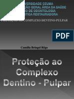 Complexo Dentino-Pulpar- Camilla Bringel
