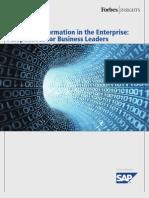 SAP InformationManagement 04 2010