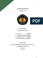 EXP PART II - LAPORAN.docx