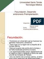 Fecundación, Desarrollo embrionario Preimplantación