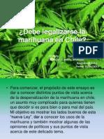 Debe Legalizarse La Marihuana en Chile