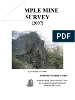 Temple Mine Survey (2007)