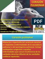 corazón Pulmonar Uanderson Presentación