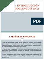 TEMA 2.PSICOLINGUISTICA.pptx