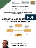 INCA-SAGARPA. Asesoria a Organizaciones Economicas Rurales- ANALISIS FODA. Dr AndresMR 2012