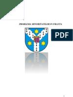 Minoritati in Franta