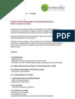 13. Curso Psicogeriatria y Psicogerontologia