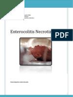 Informe Enterocolitis necrotizante