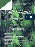 clorofitas 2008.1