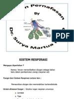 Sistem Respirasi Manusia SURYA
