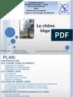 Chene Liege