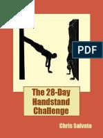 28 Day Handstand Challenge