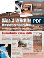 Wildlife massacred for meat