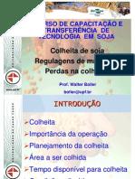 2011_3_colheita