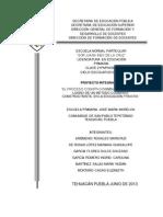 Proyecto Integrador de San Pablo Tepetzingo Final