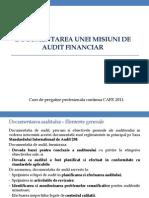 Documentarea Unei Misiuni de Audit-A. Dinca