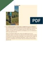 La estructura social en Guatemala.docx