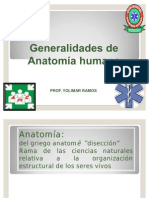49154389 Posicion Anatomica Humana