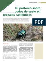 Efectos Del Pastoreo Sobre Los Artropodos de Suelo en Brezales Cantabricos