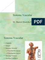 Clase 18 Vascular (1)