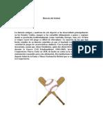 Historia del béisbol