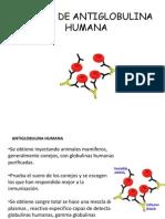 Anti Globulin A