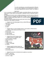 cortes de carnes.docx
