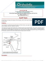 slap tears-orthoinfo - aaos