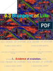 HSC Biology Blue Print of Life