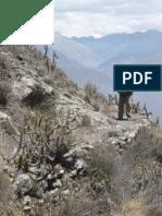 Redes Viales Prehispanicas en La Cuenca Alta Del Rio Huaura - Segmento