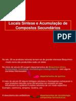 apresentação+1+qpnII