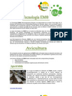 01 Pa Avicultura2