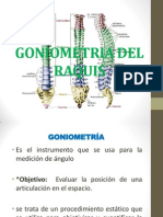 GONIOMTRIA DEL RAQUIS.pptx
